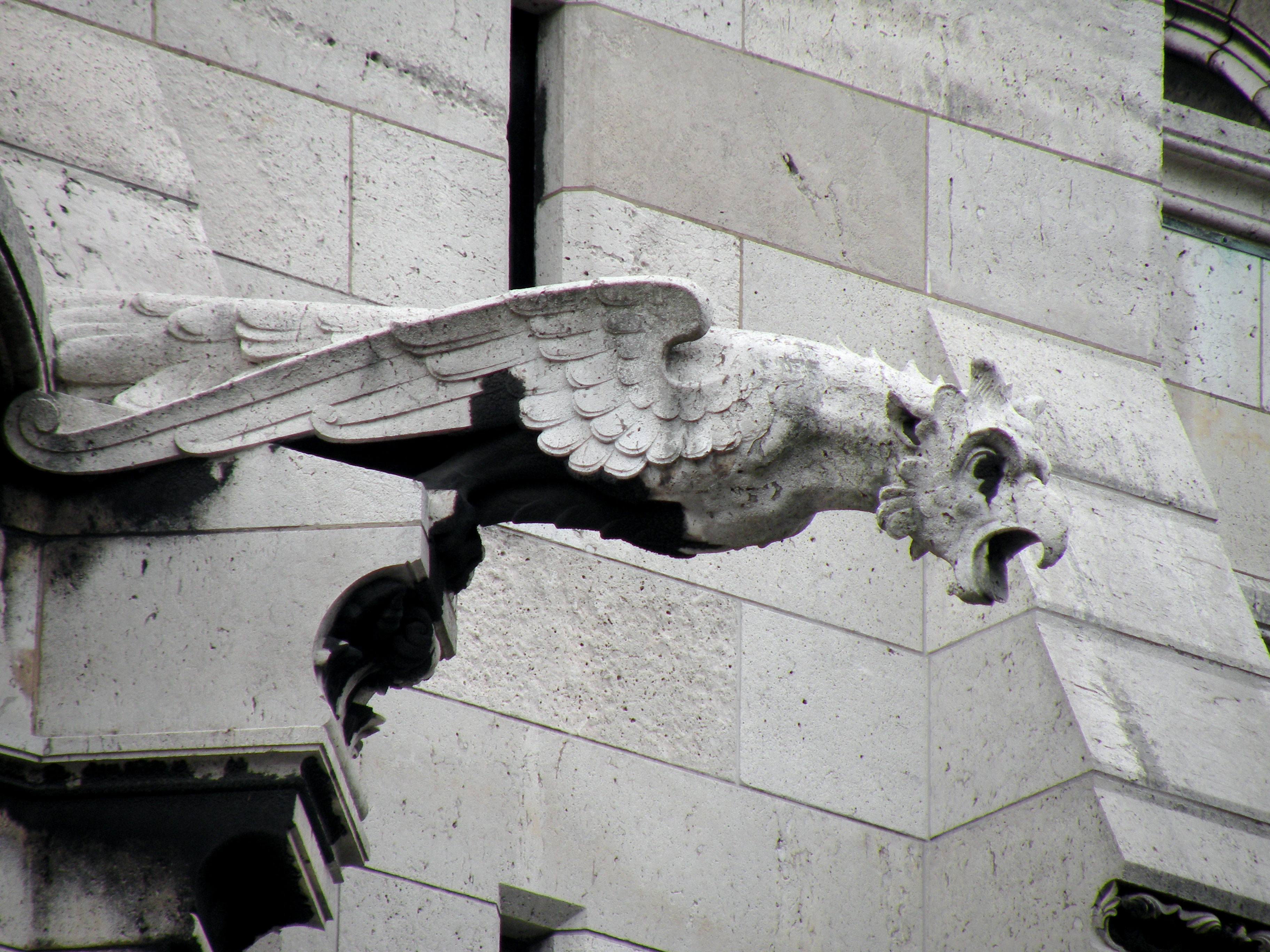 gothic cathedrals gargoyles viewing gallery
